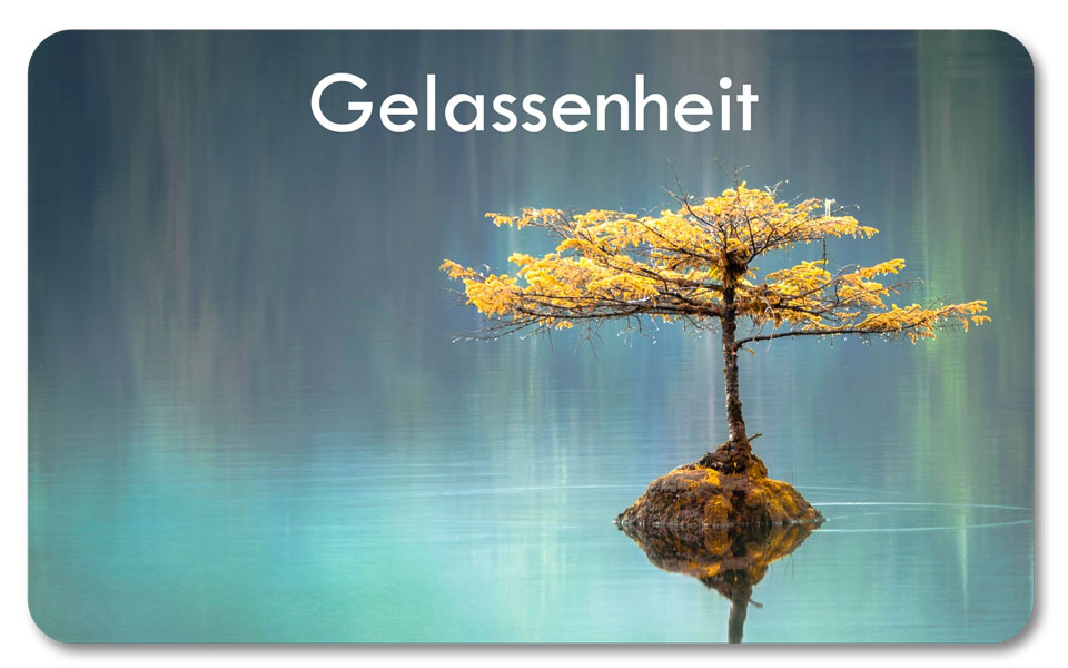 ein Baum mitten im See